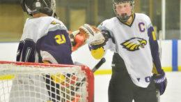 https-elyriact-smugmug-com-sports-high-school-hockey-one-goal-enough-for-avon-in-i-zq4mhgq-0-m-dr-danny-fielding-joe-goetz-m